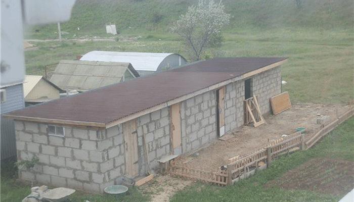 Комфортное жилище для кроликов: строим удобный сарай из пеноблоков для успешного кролиководства